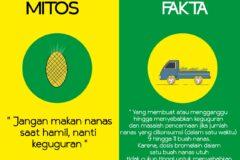 Makan Nanas saat Hamil bikin Keguguran MITOS atau FAKTA